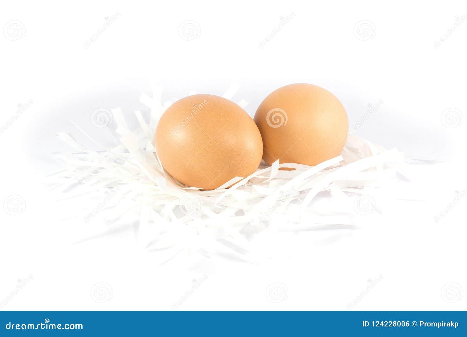 För papperssnitt för nya fega ägg som pålagd rest isoleras på vitbaksida