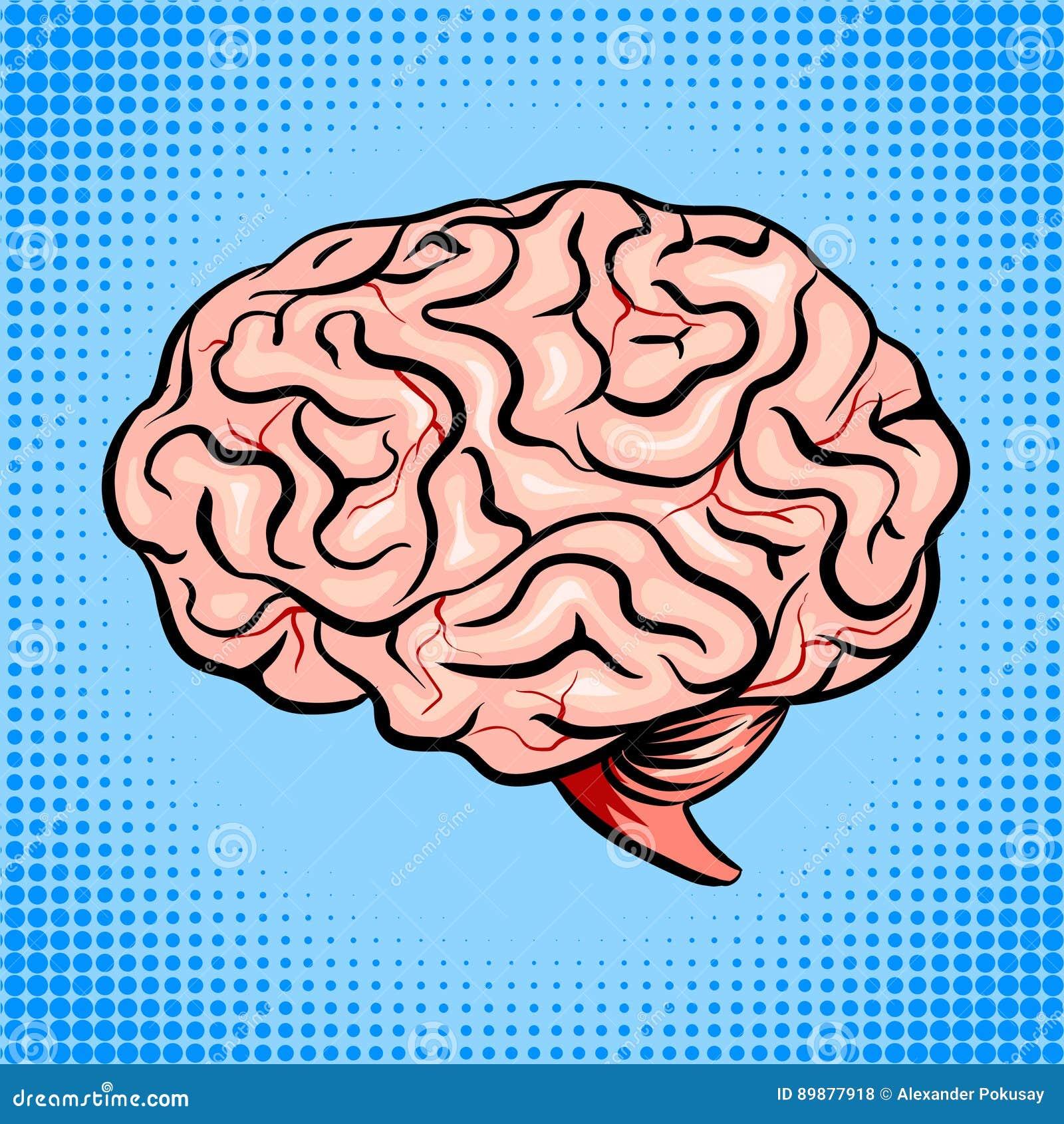 För popkonst för mänsklig hjärna illustration för vektor för stil