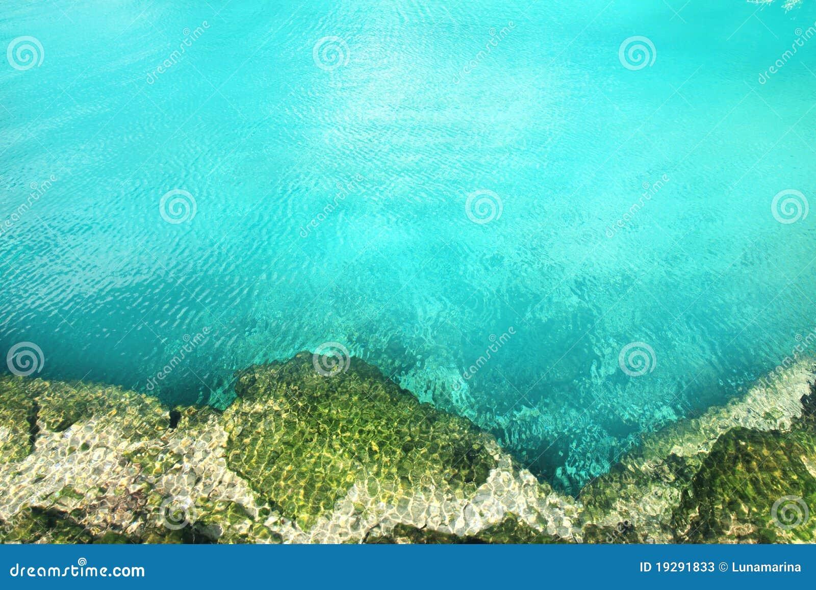 För riviera för cenotemangrove mayan vatten turkos