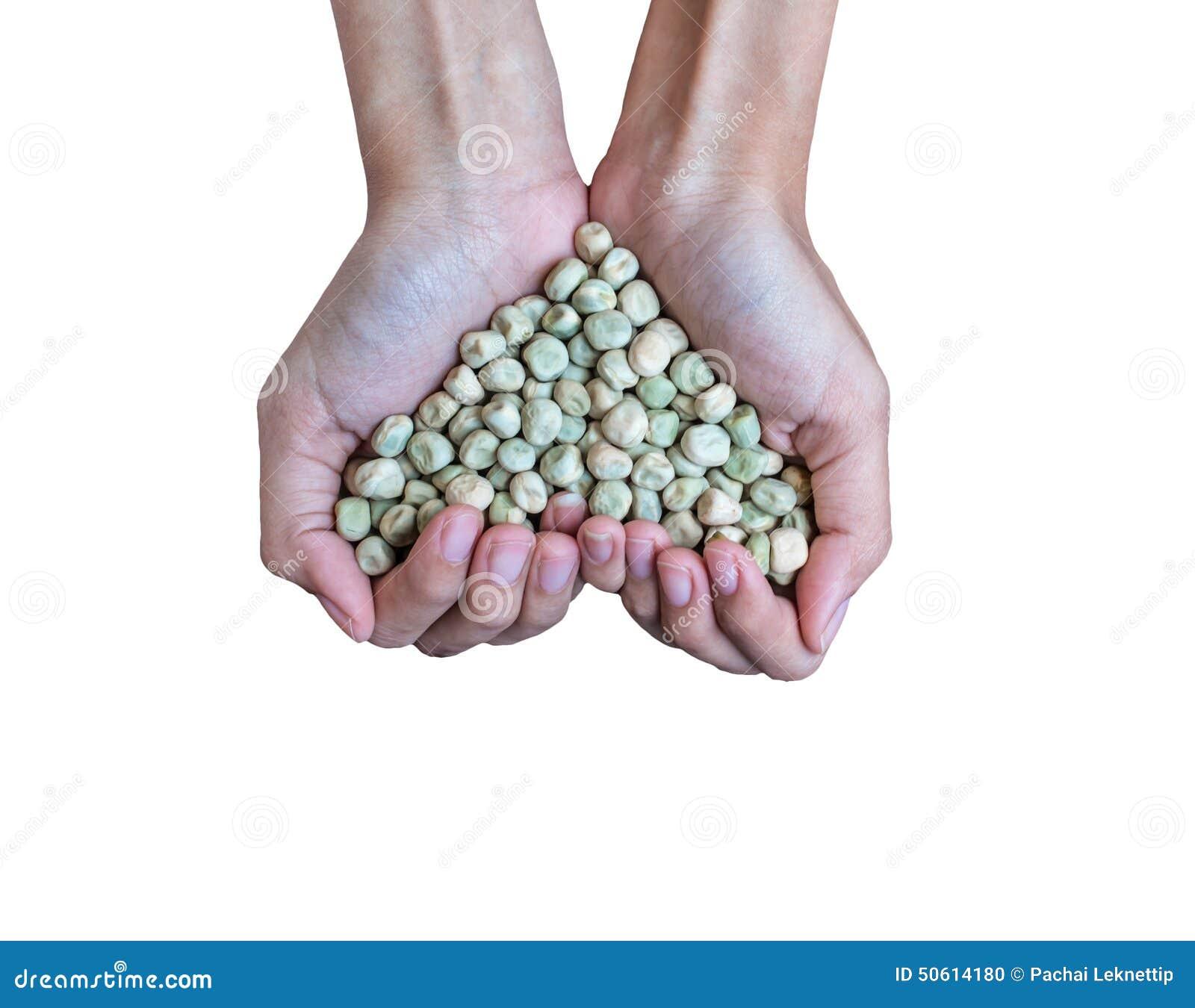 För sockerärta för handfull rikt frö (hjärtaform)