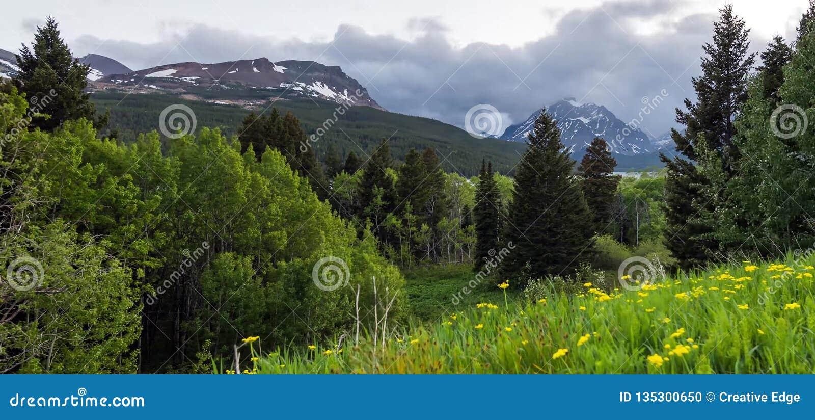 Förbluffa berg i den storslagna Teton nationalparken