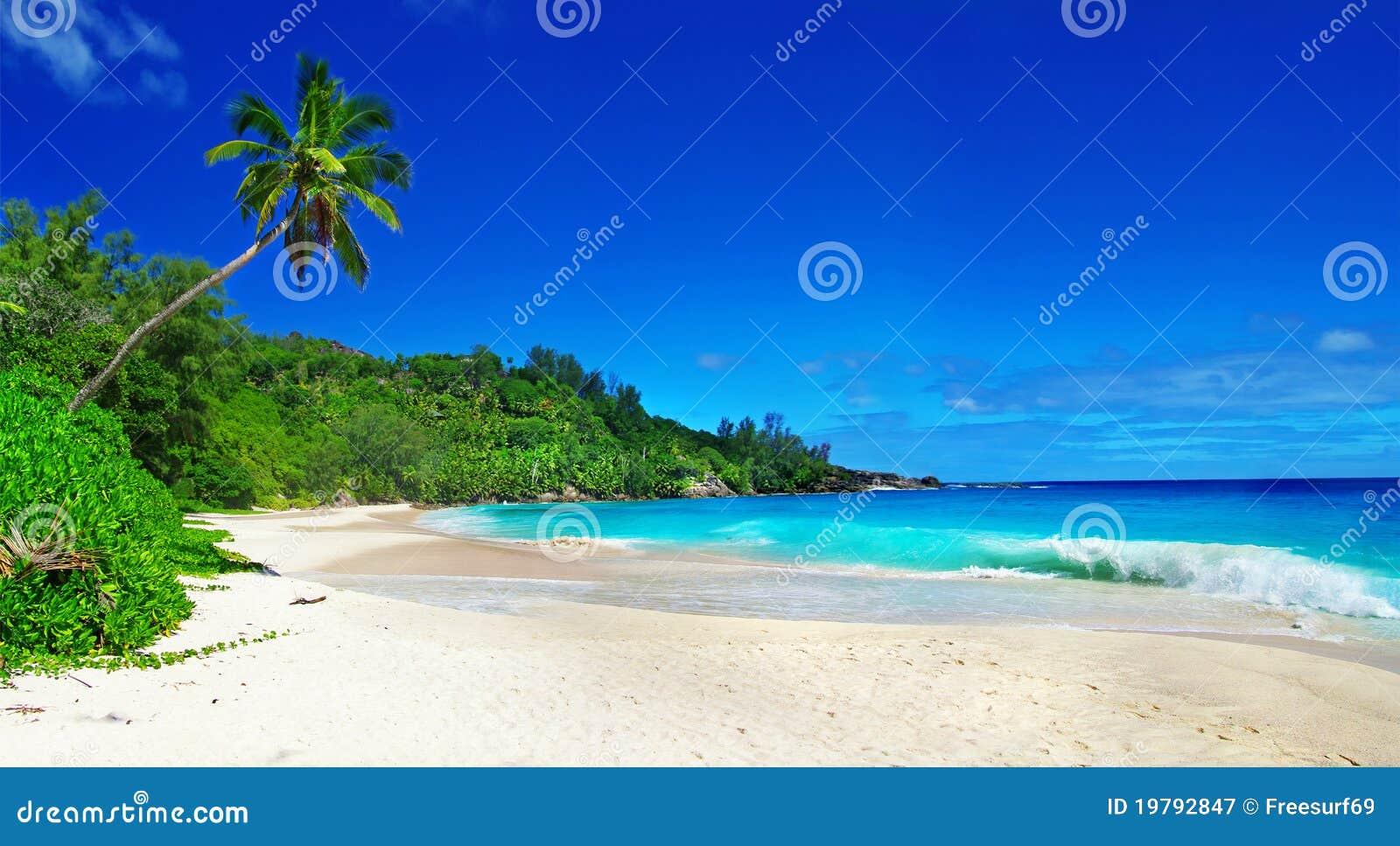 Förbluffa seychelles