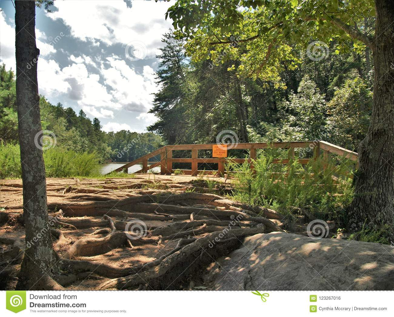Fördämning på sjön Norman State Park i North Carolina