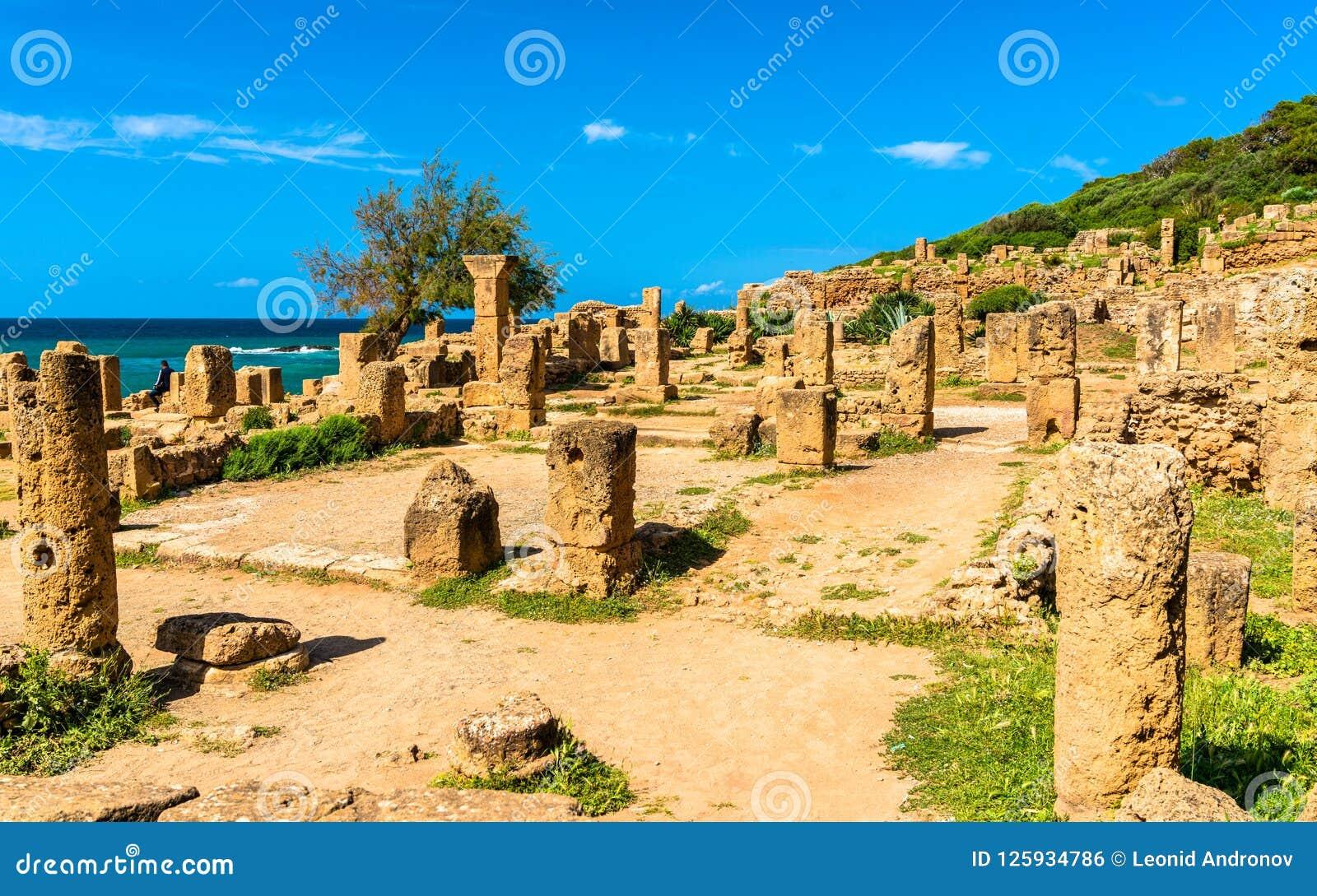 Fördärvar av Tipasa, en romersk colonia i Algeriet, Nordafrika