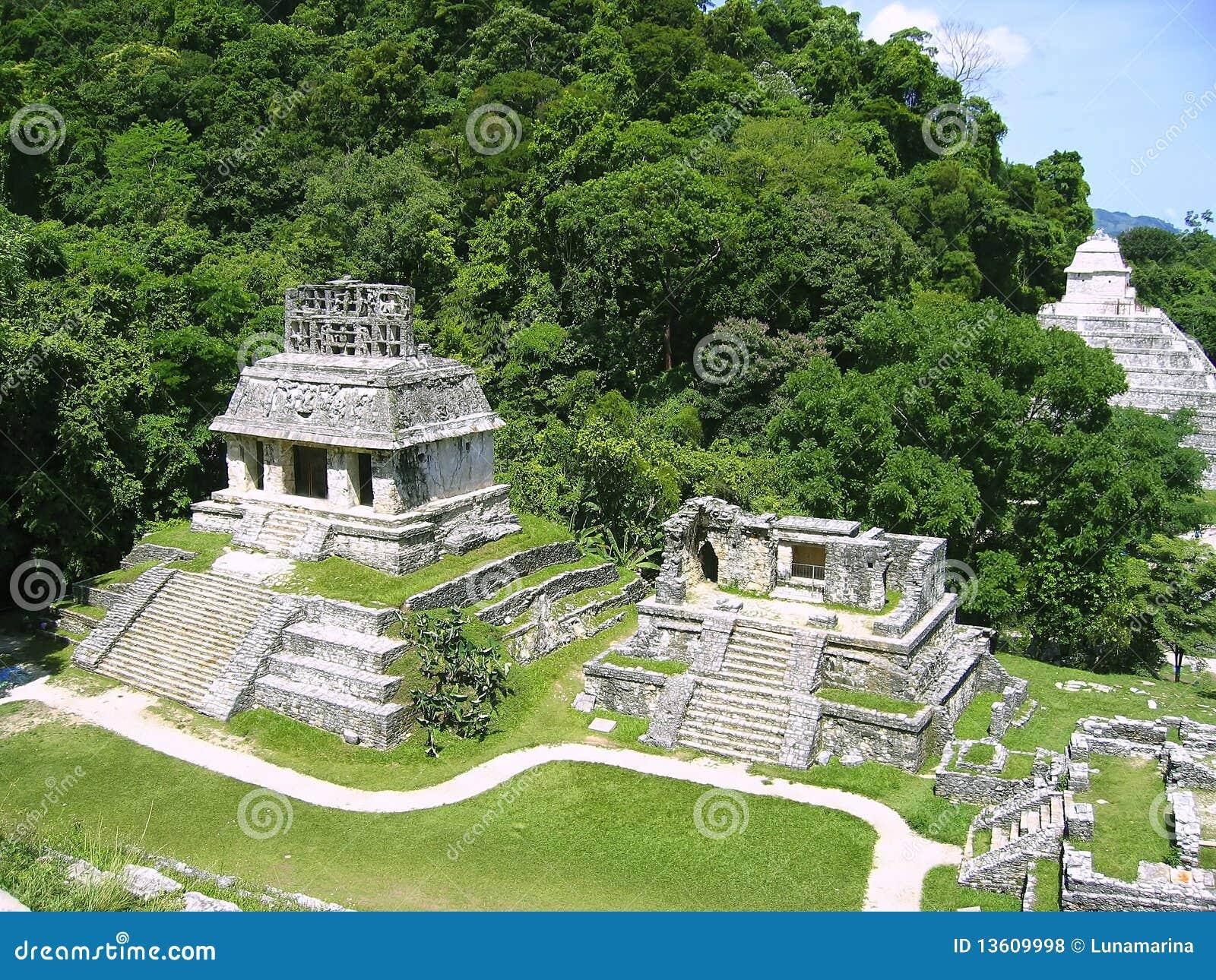 Fördärvar mayan mexico för chiapasmaya palenque