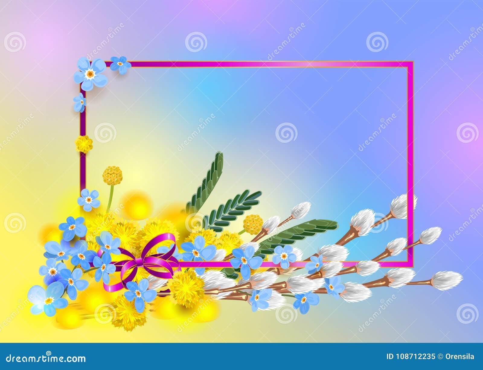 Förgrena sig den blåa förgätmigejen för bukett, den gula mimosan och den fluffiga pilen Vår för ramvykortsäsong