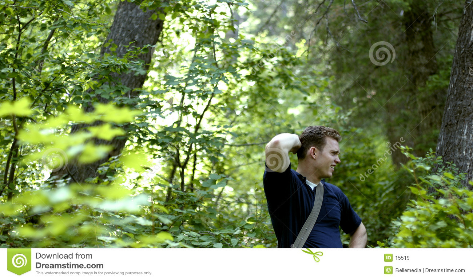 Förlorad skog