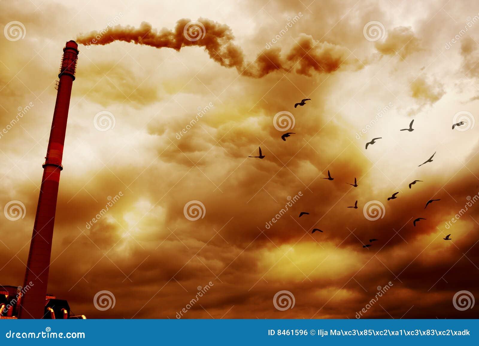 Föroreningrök
