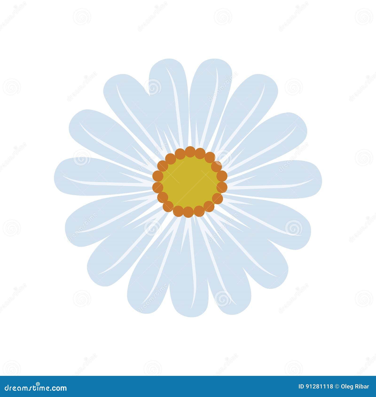 Försiktiga Daisy Blossom i allsidig blått- och gulingblommaillustration i vektor