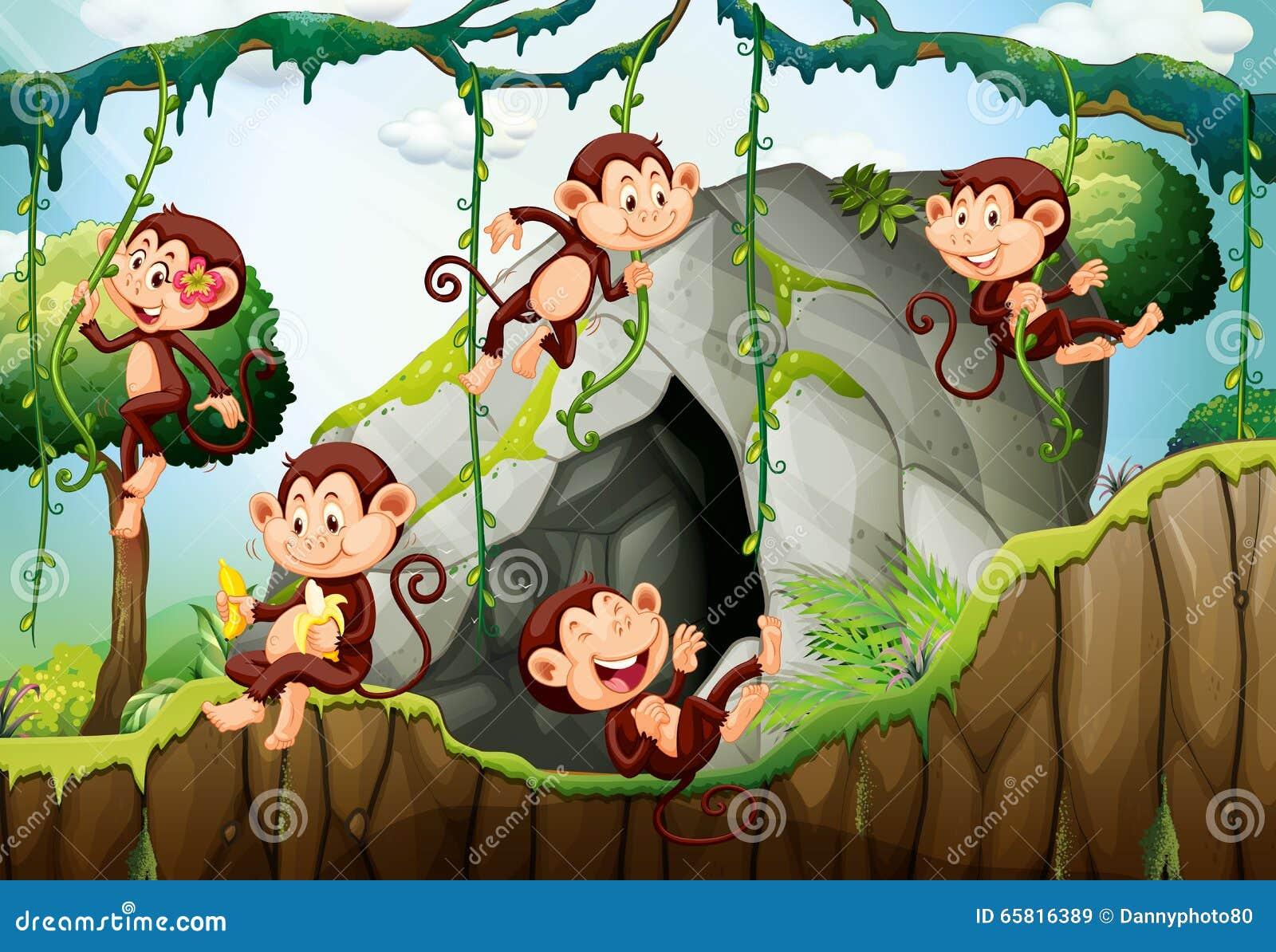 Fünf Affen, die im Wald leben
