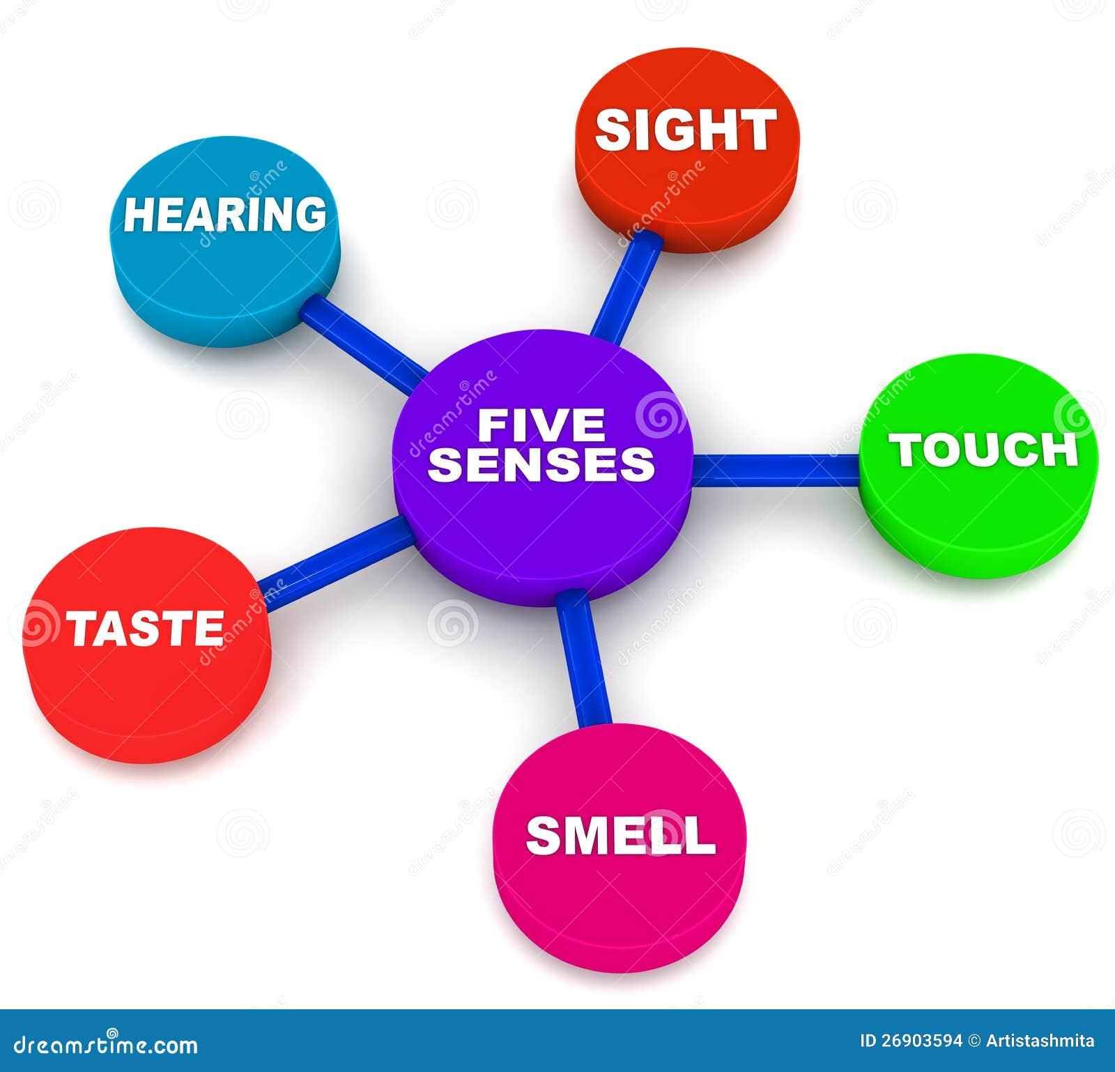 Fünf menschliche Richtungen
