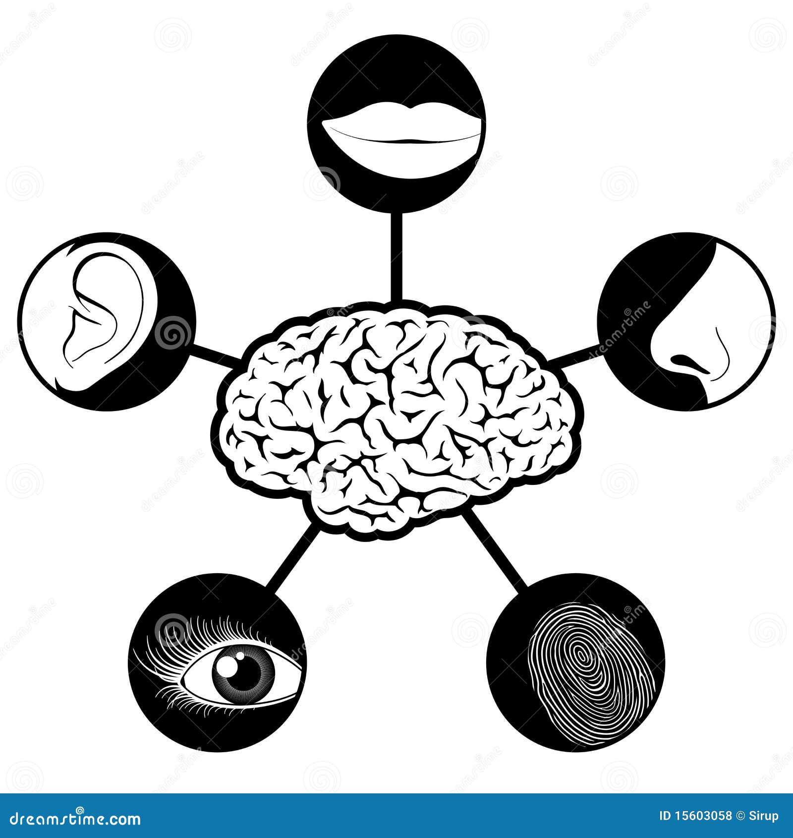 Fünf Richtungsikonen gesteuert durch Gehirn
