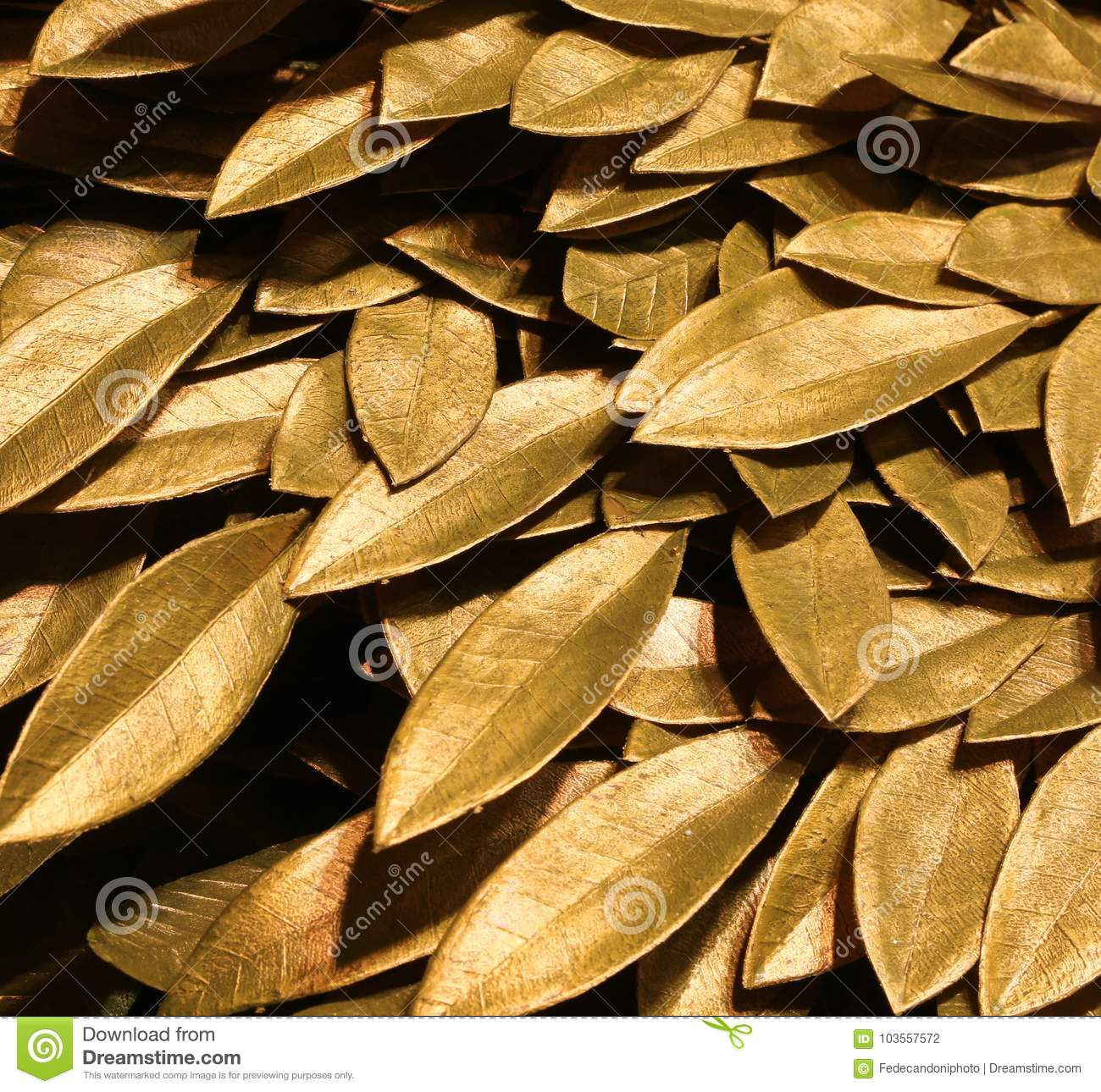 F Golden Laurel Leaves Symbol Of Victory And Triumph Stock Photo