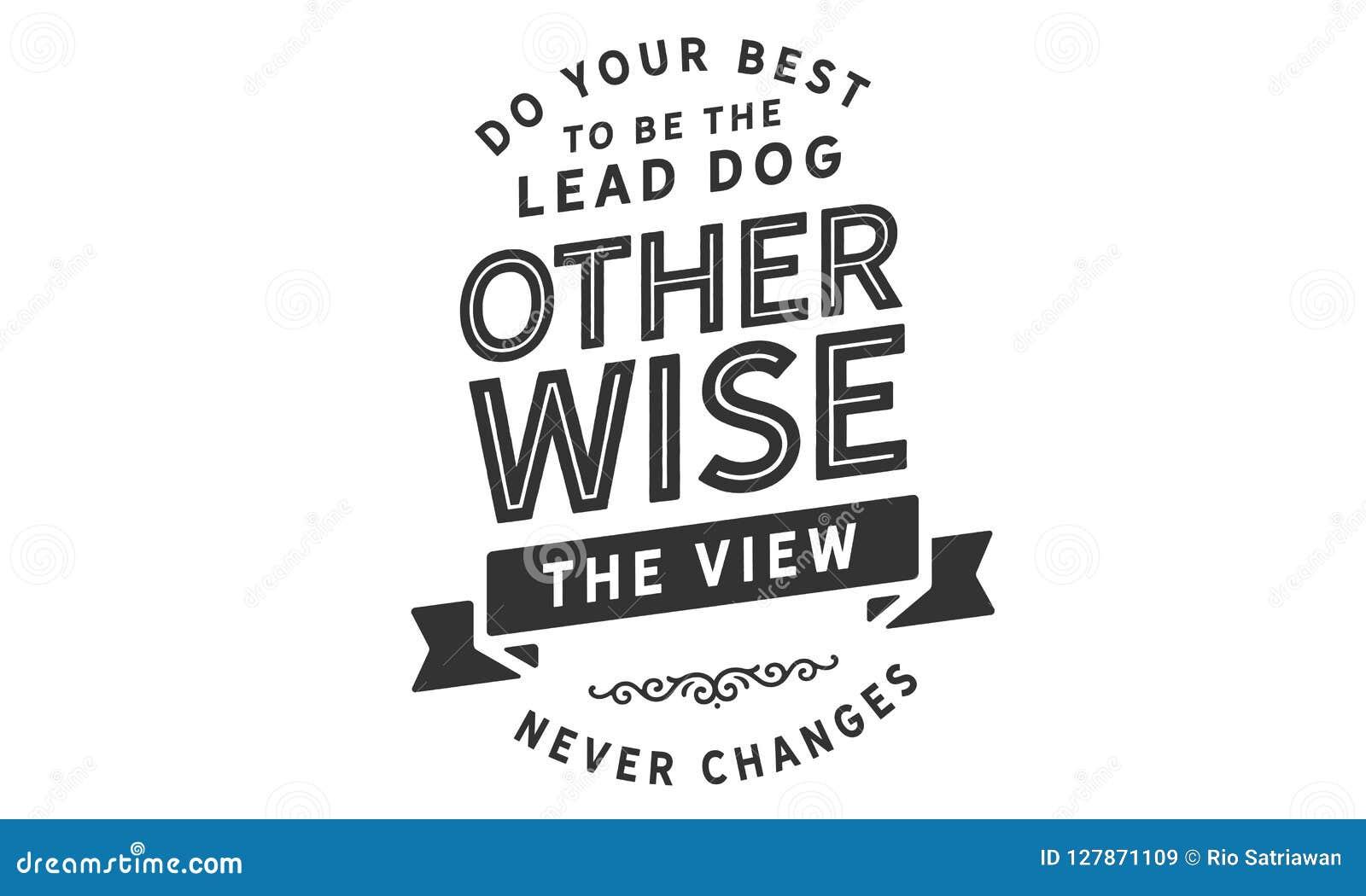Faça seu melhor para ser o cão da ligação de outra maneira que a vista nunca muda