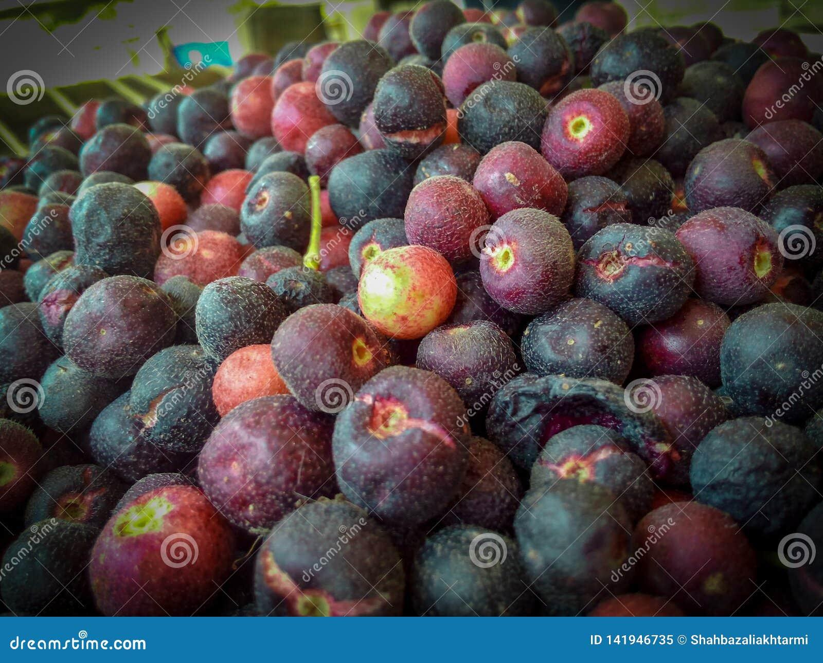 Faalsha un type de baie fruits, seerat et fruit aigre de goût