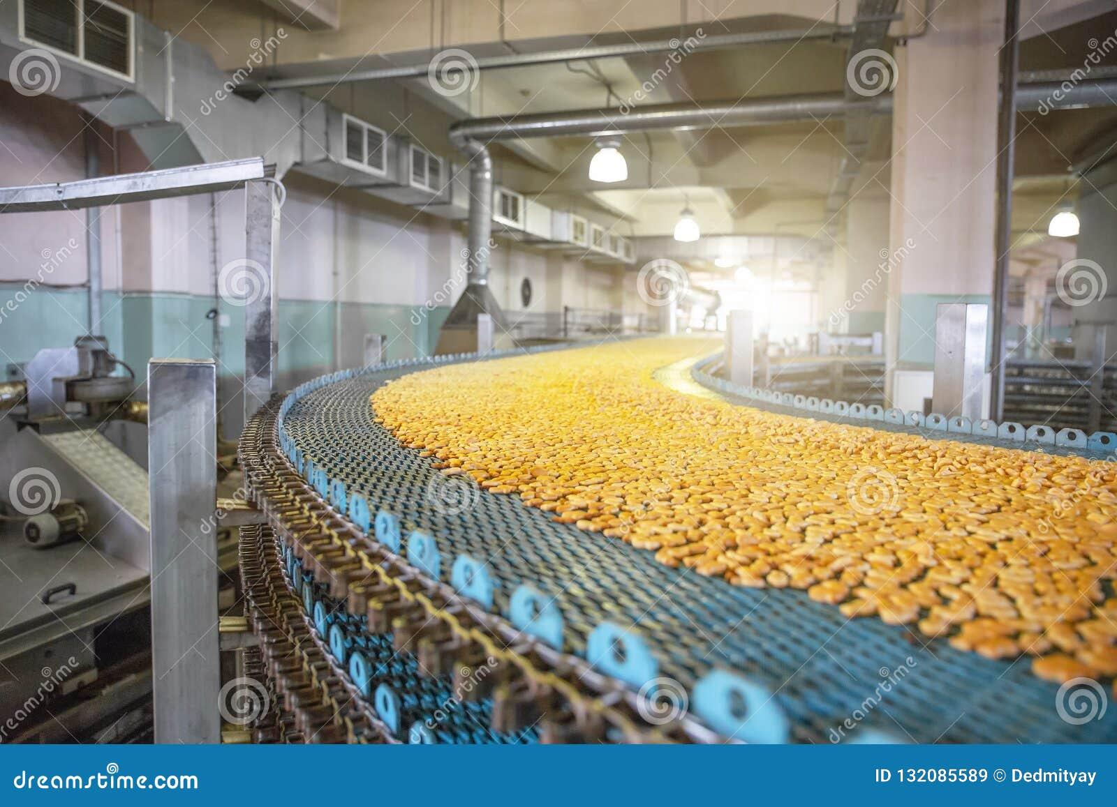 Fabricación de la fábrica de la comida, banda transportadora industrial o línea con el proceso de la preparación de galletas dulc