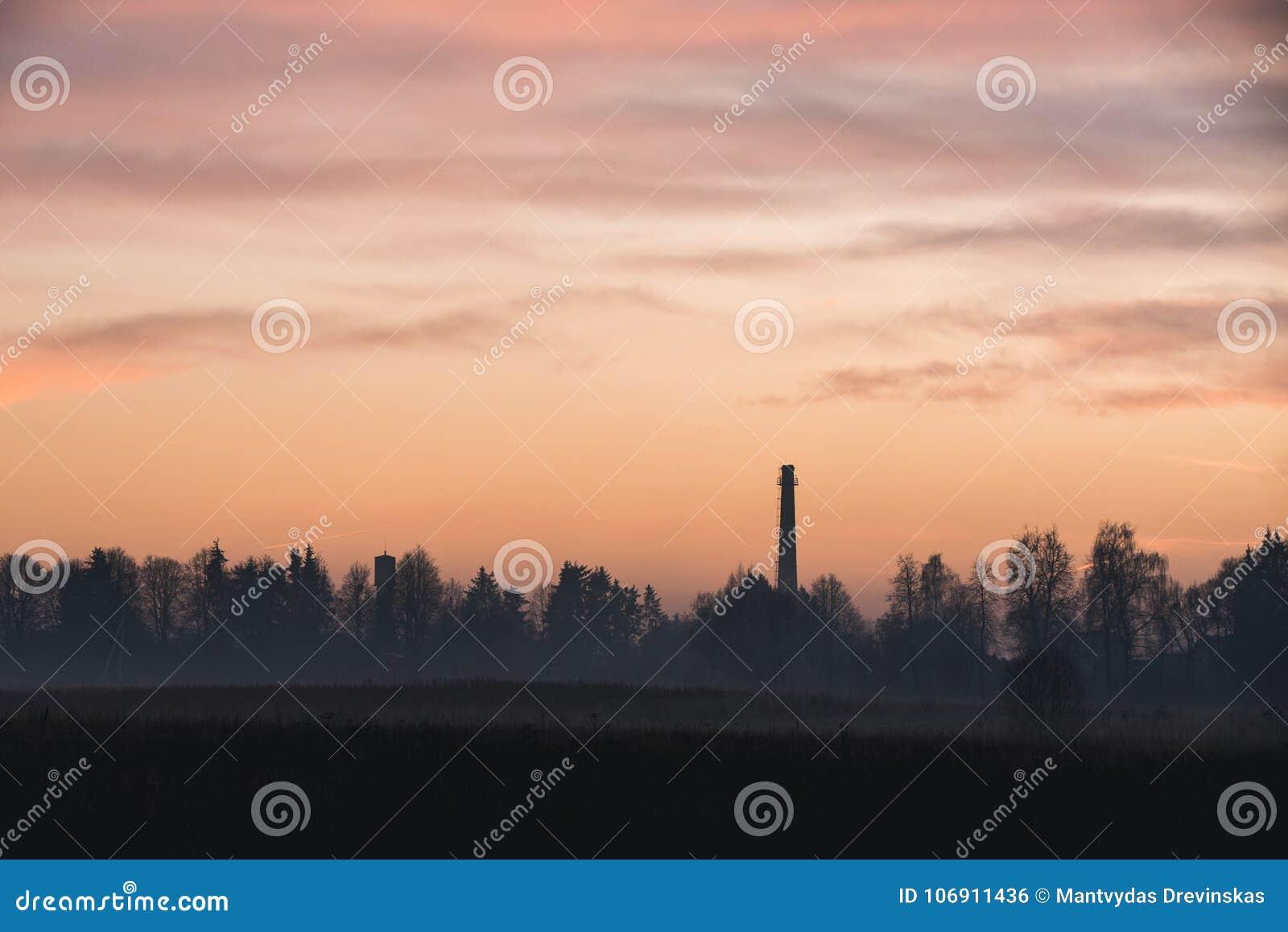Fabryczny komin w lesie przy zmierzchem