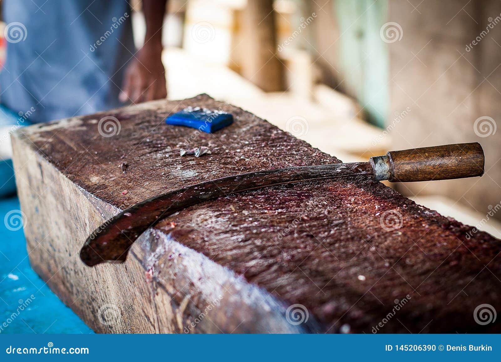 Faca curvada para cortar peixes na placa de corte a ferramenta do pescador para cortar peixes Marisco fresco