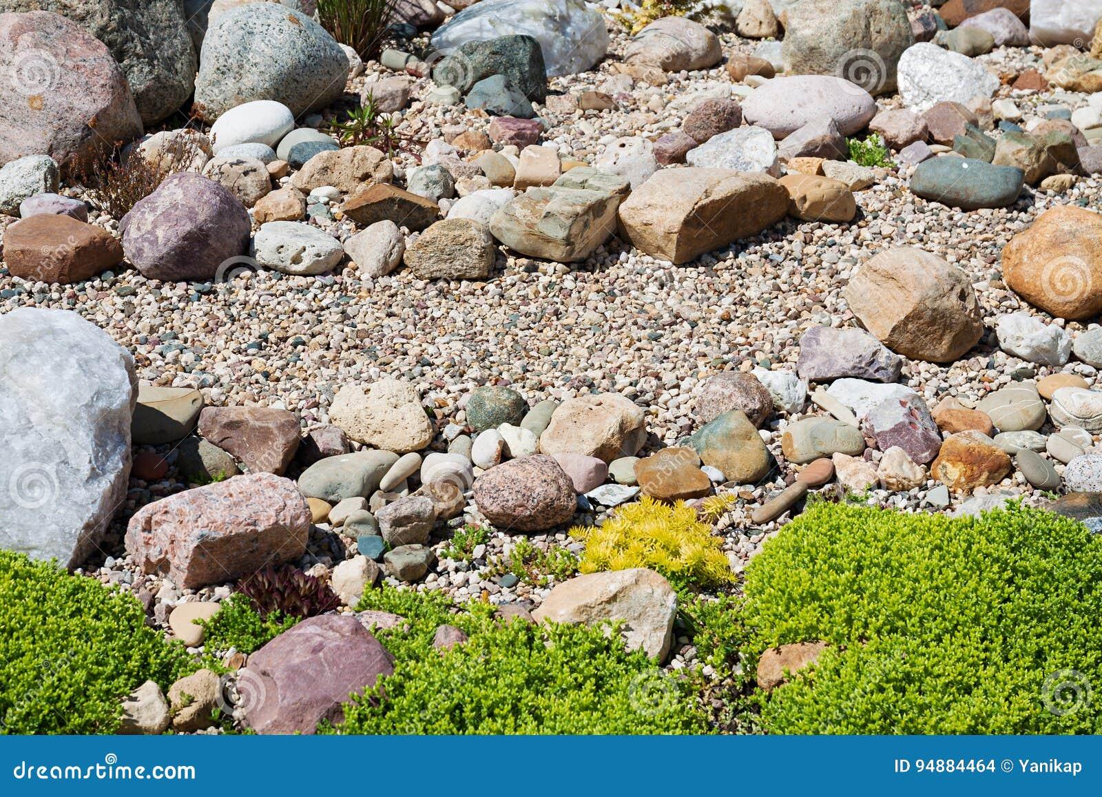 Faccia il giardinaggio con progettazione dalle piante e - Giardino con pietre ...