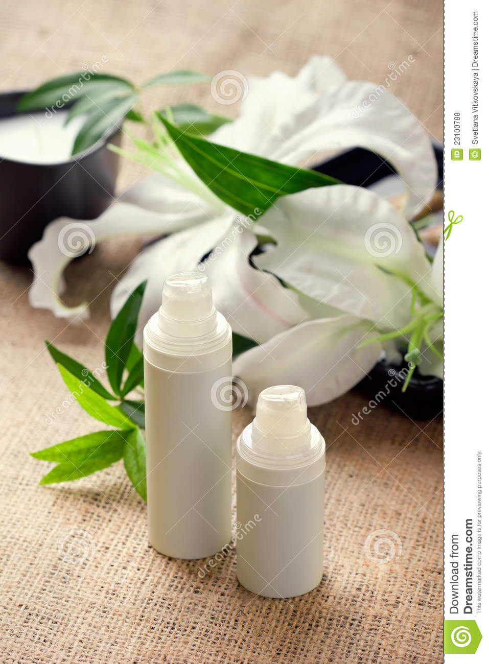 Facebody care concept lily flower with creams stock photo image download facebody care concept lily flower with creams stock photo image of izmirmasajfo