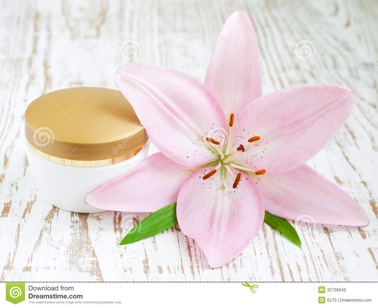 Face cream with lily flowers stock photo image of care flower download face cream with lily flowers stock photo image of care flower 32736046 izmirmasajfo