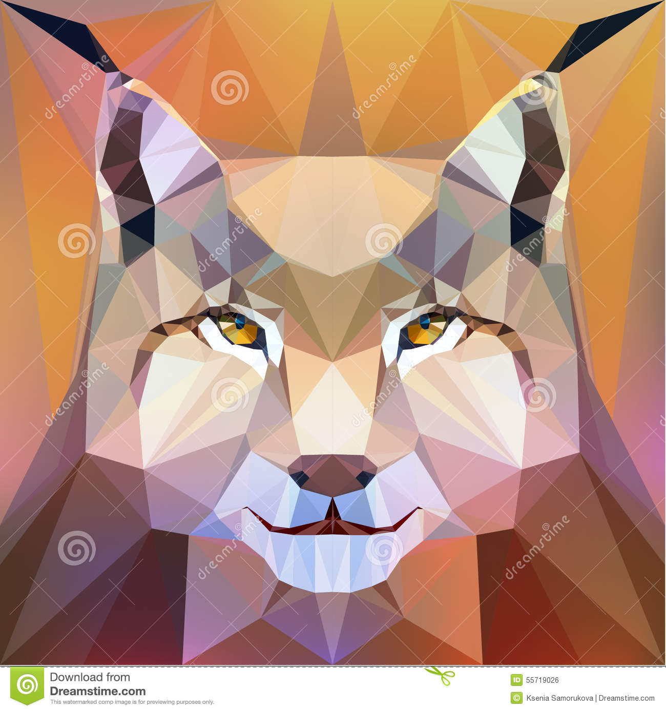 Face of a lynx stock vector  Illustration of triangle - 55719026