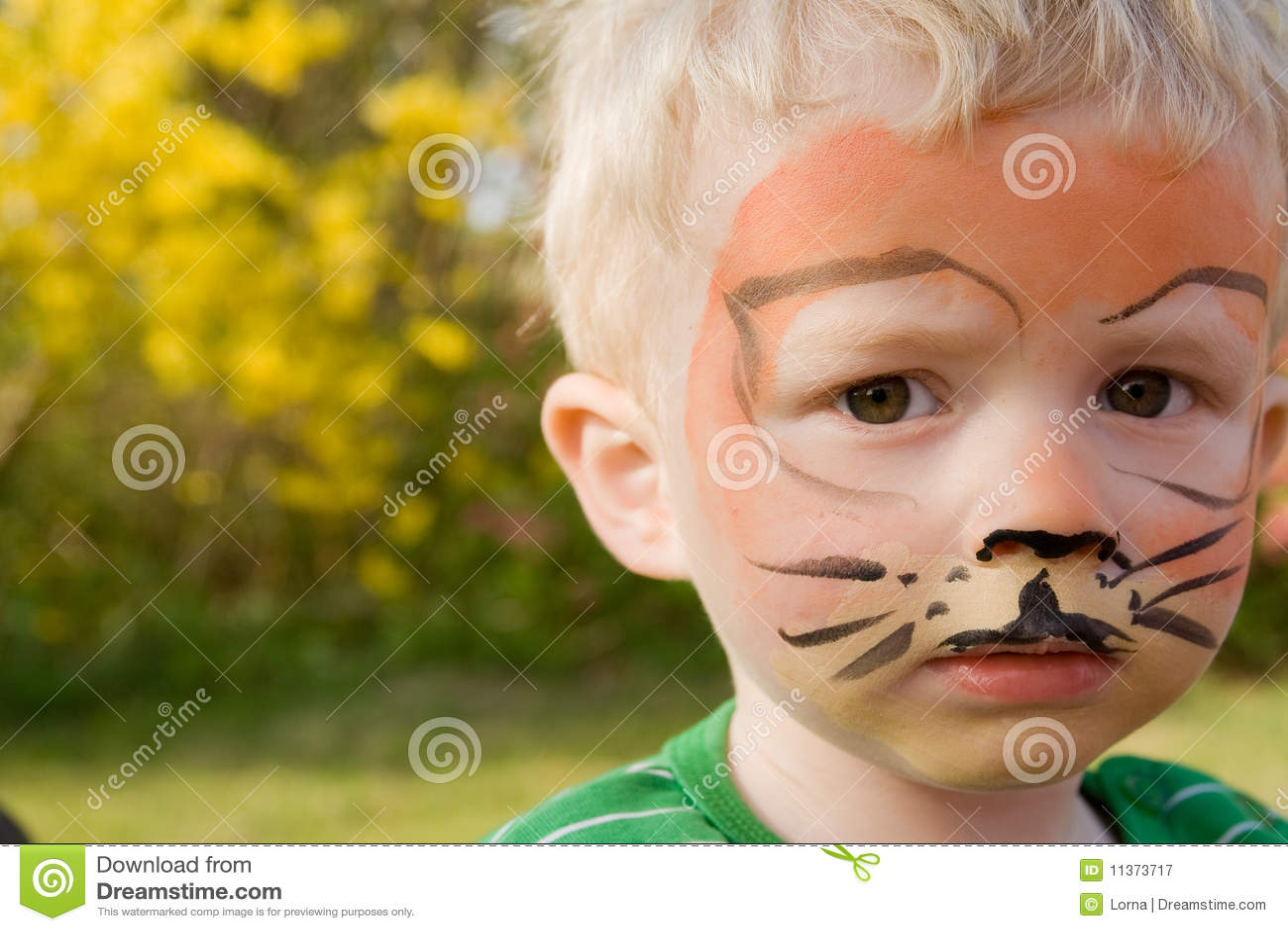 Как нарисовать тигра на лице ребенка