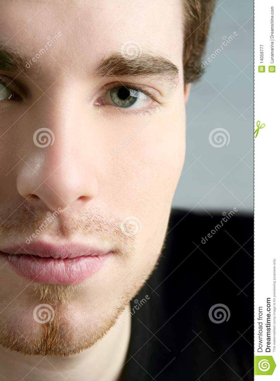 Face To Camera Young Handsome Man Portrait Royalty Free