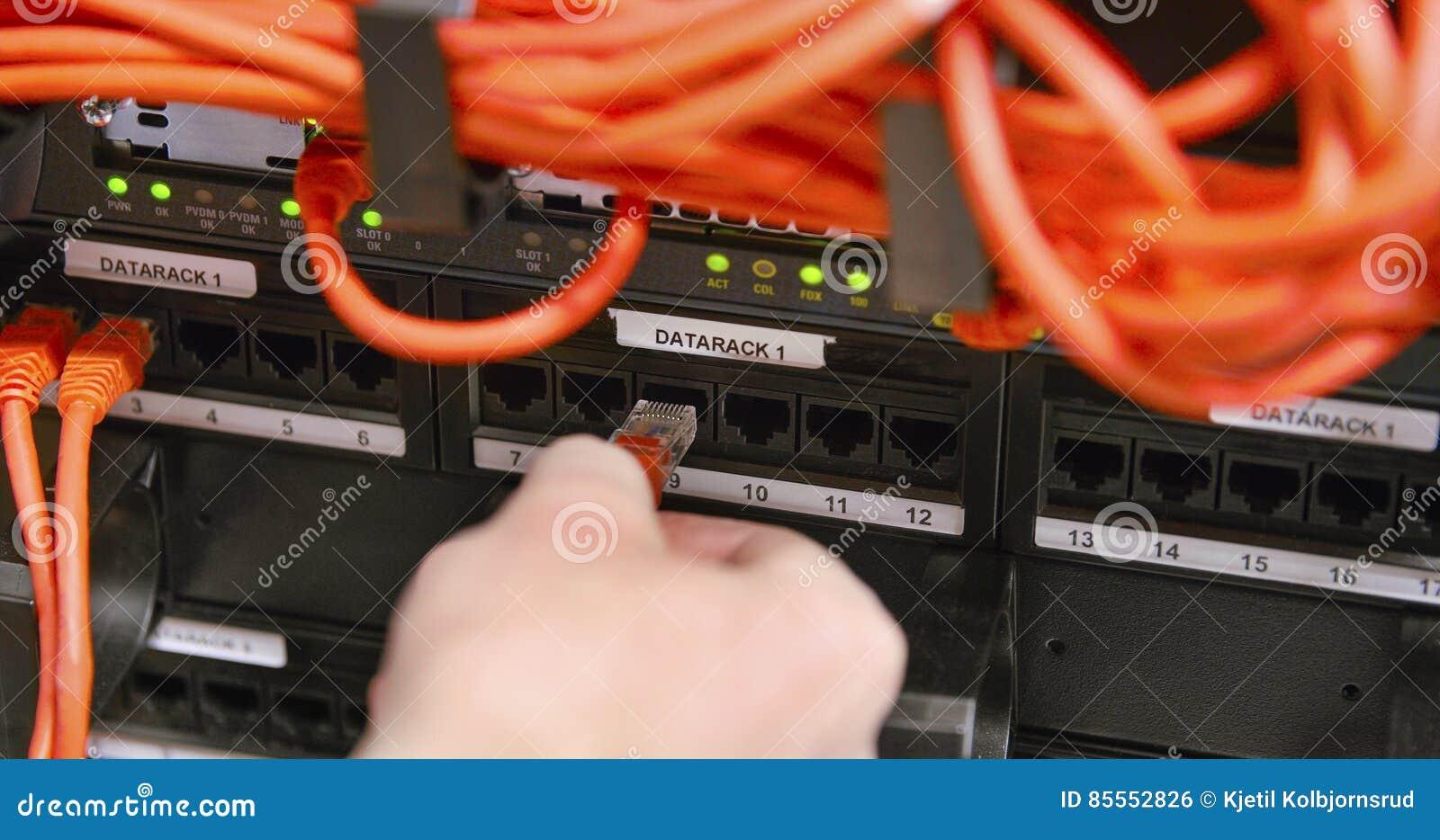 IT-Fachmann schließen Netzkabel in der Platte am datacenter an