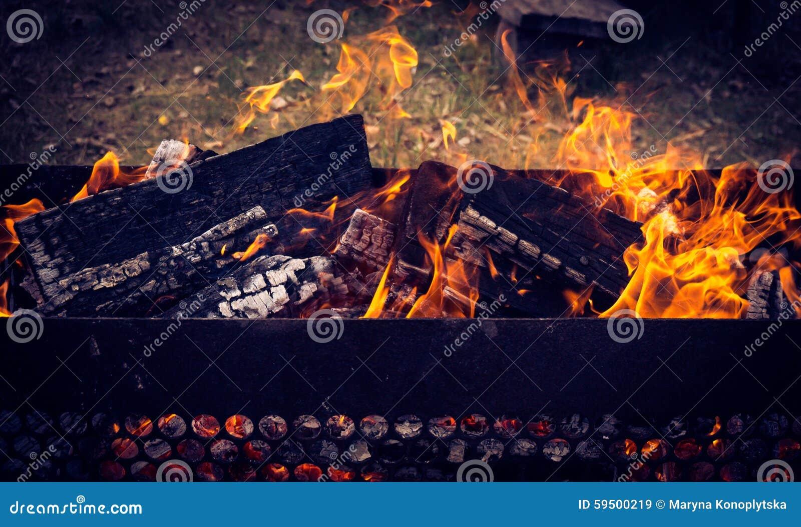 Facilidades quentes do BBQ cercadas por natureza