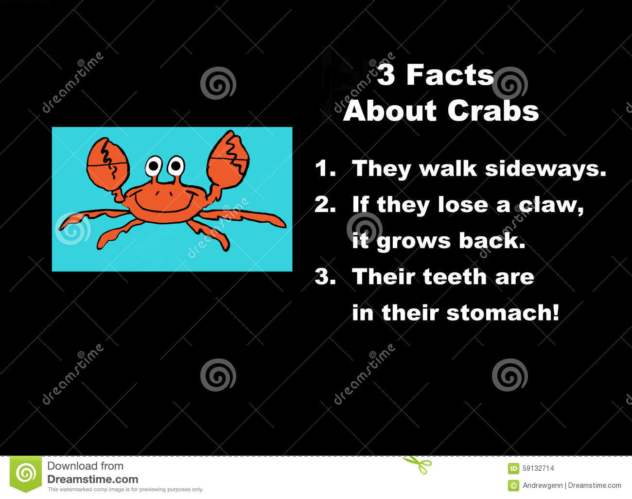 Facts About Crabs Stock Illustration - Image: 59132714