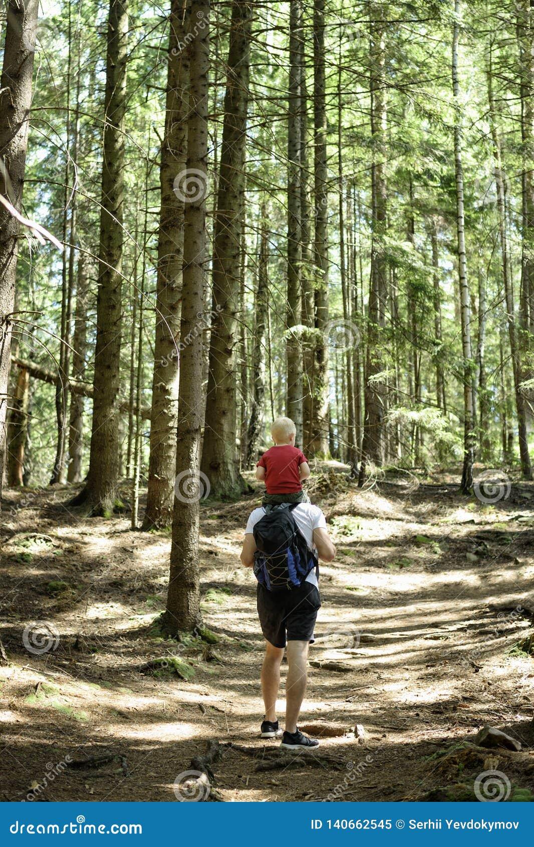 Fader med ryggsäcken och den unga sonen på hans skuldror som går på en barrskogbaksidasikt Aktiviteter och turism