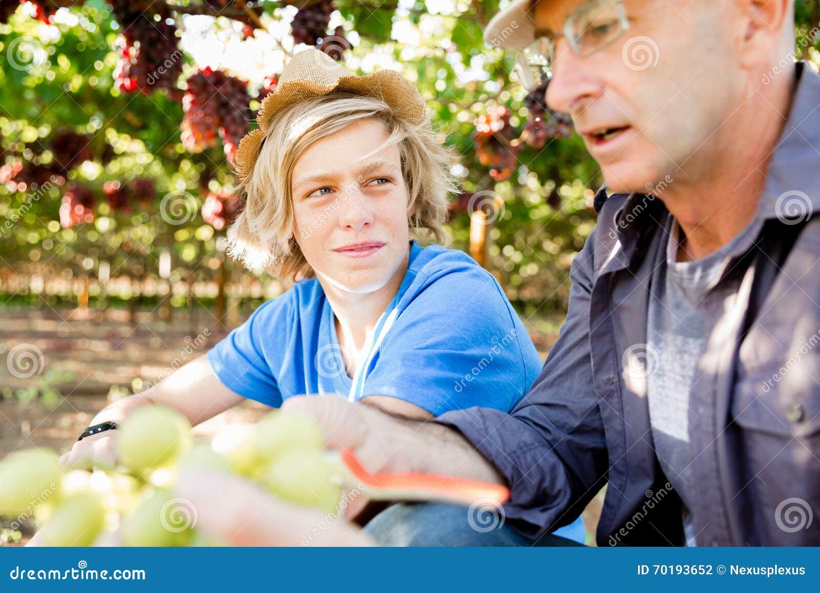 Fader och son i vingård