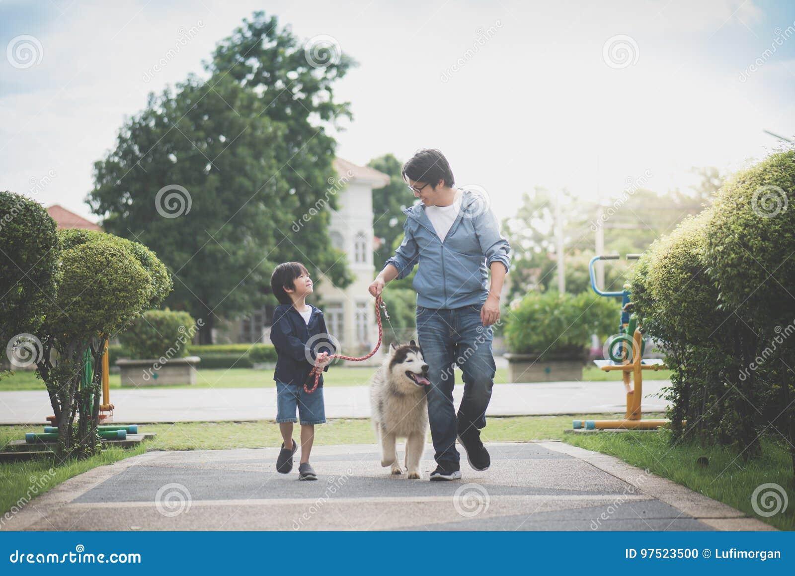 Fader och son som går med en siberian skrovlig universitetslärare i parkera