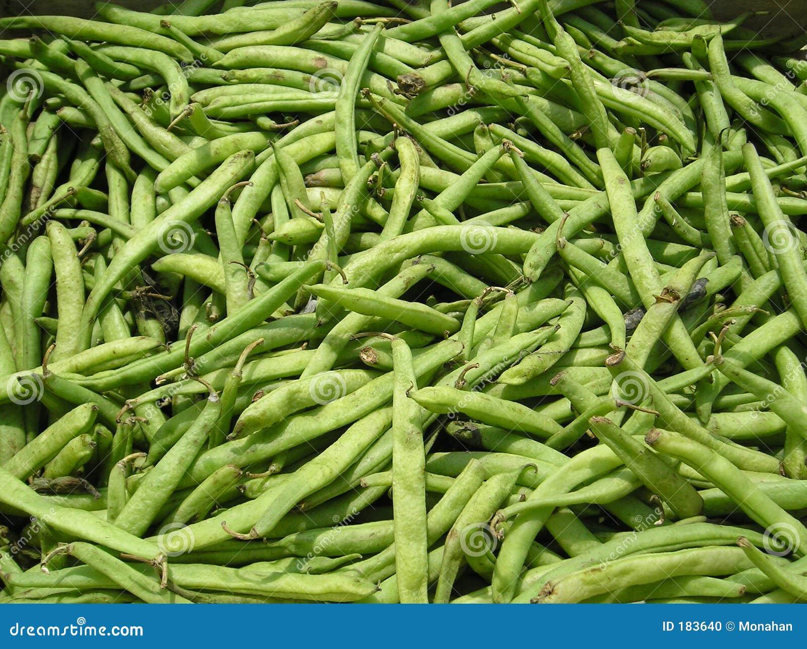 Fagioli verdi