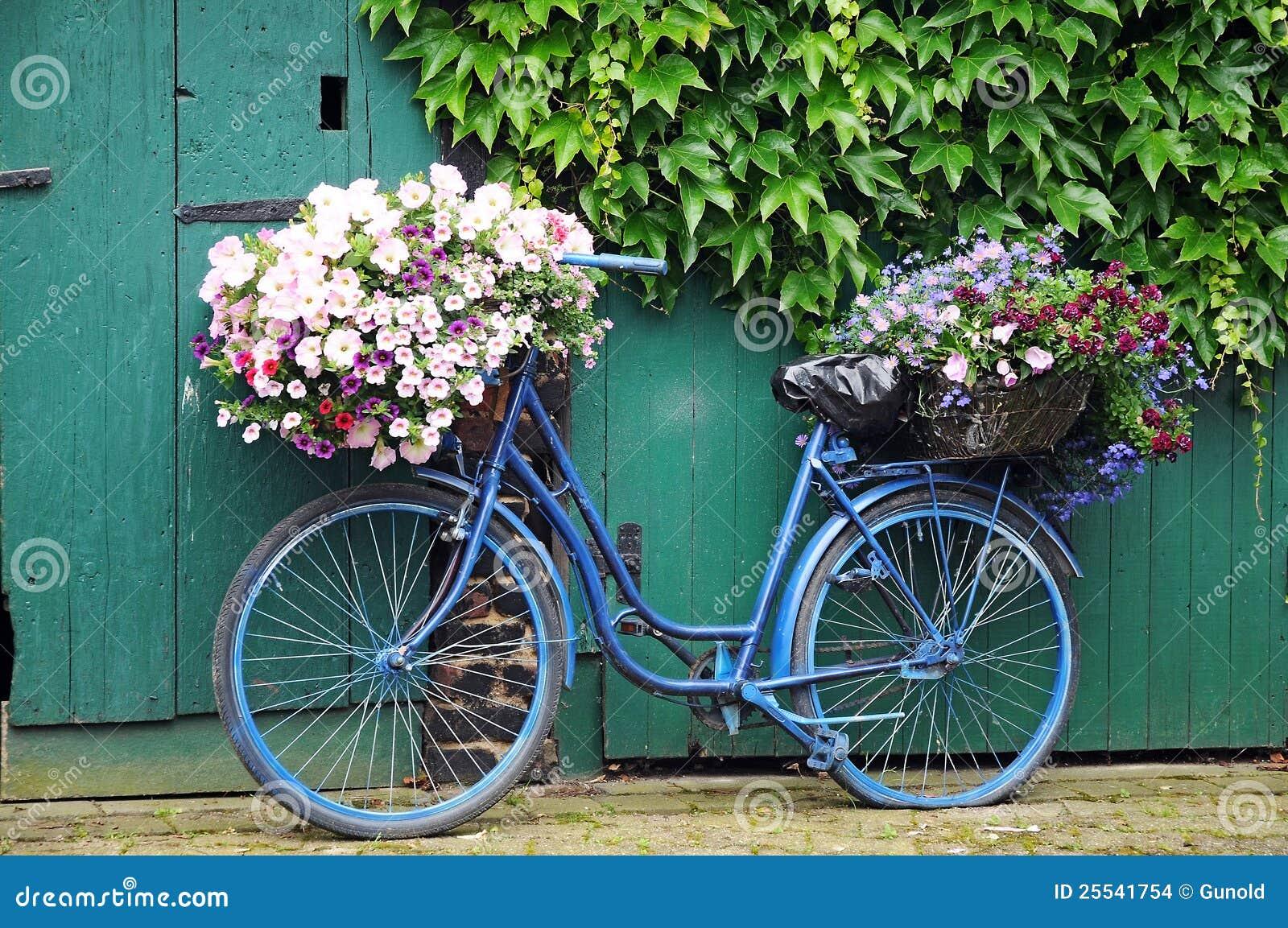 fahrrad mit blumen stockbilder bild 25541754. Black Bedroom Furniture Sets. Home Design Ideas