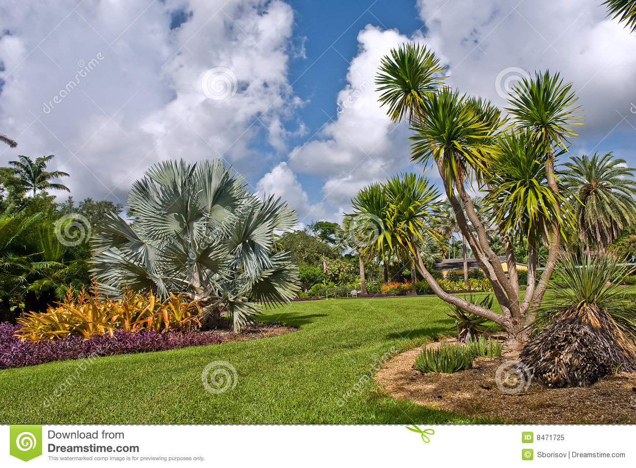 Fairchild tropical botanic garden royalty free stock photo - Fairchild tropical botanic garden hours ...