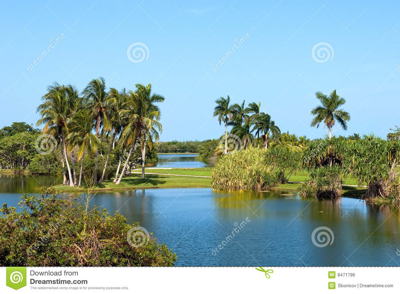 Fairchild tropical botanic garden stock photo image of - Fairchild tropical botanic garden hours ...