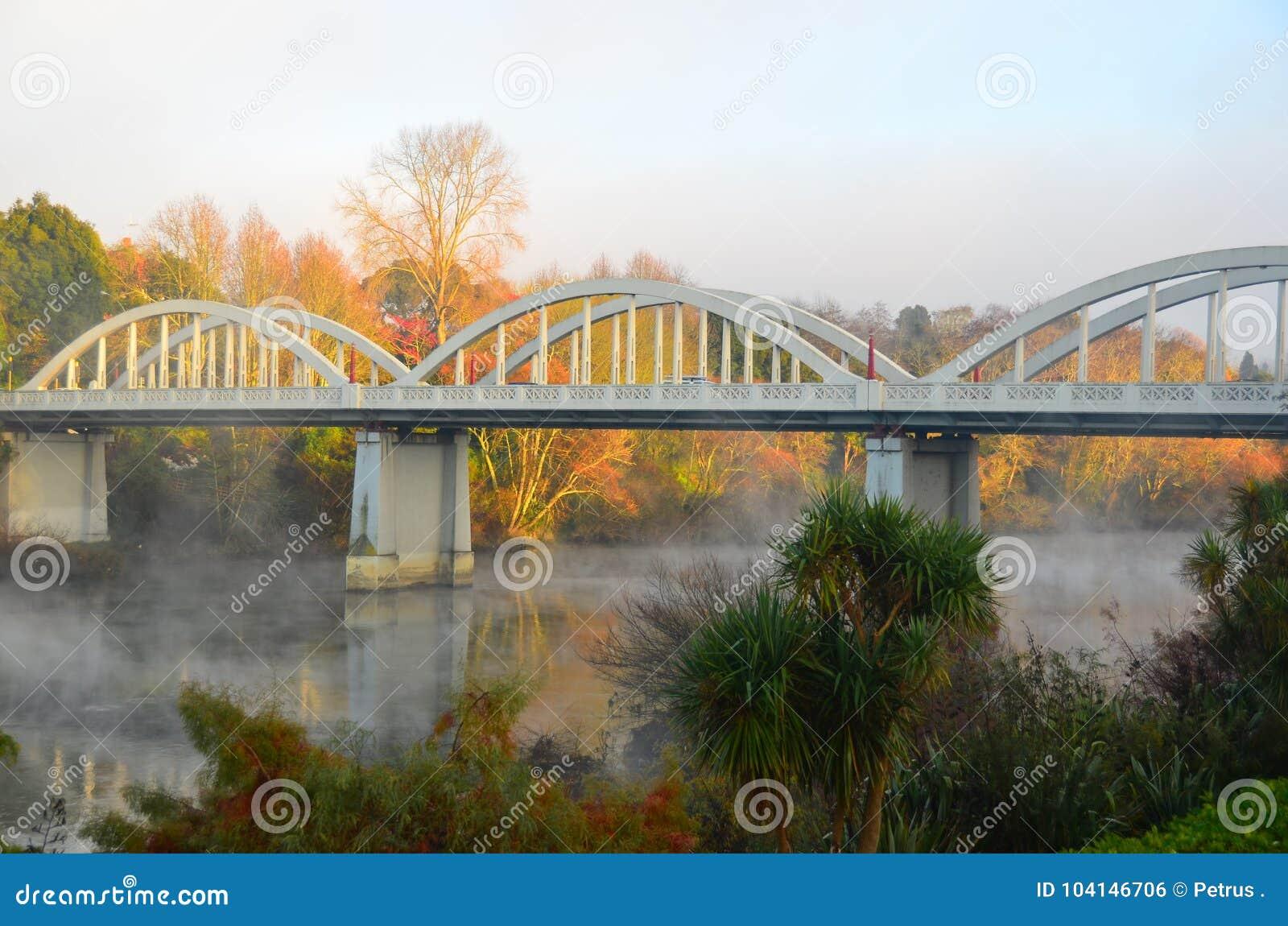 Fairfield Concrete Arch Bridge  Hamilton  New Zealand