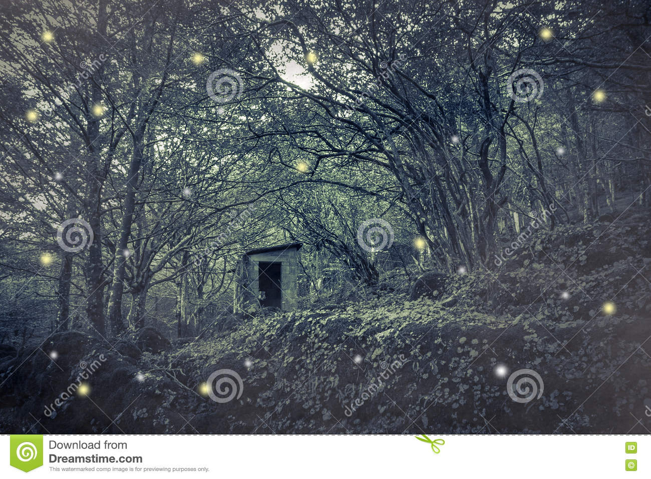 Fairies house in the wood