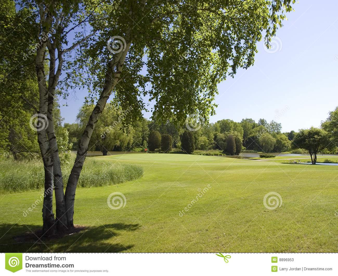 Fairway To The First Green Stock Photos Image 8896953