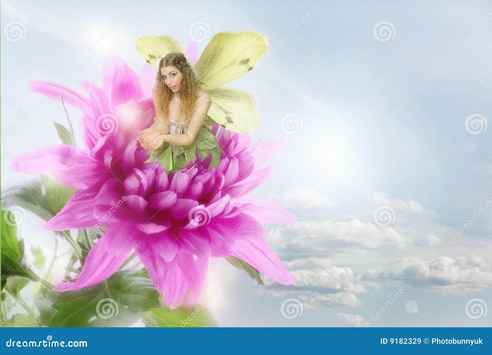 fairy royalty free stock images image 9182329 teal dahlia clipart dahlia clip art svg