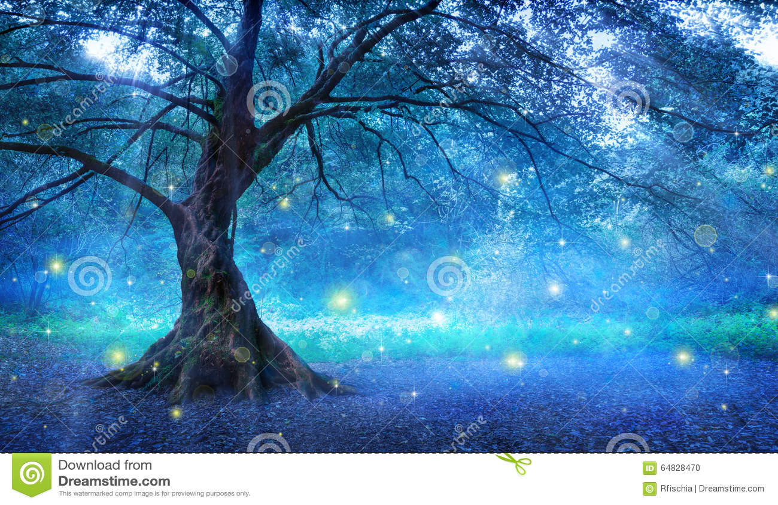 Fairy Tree Stock Photo Image 64828470