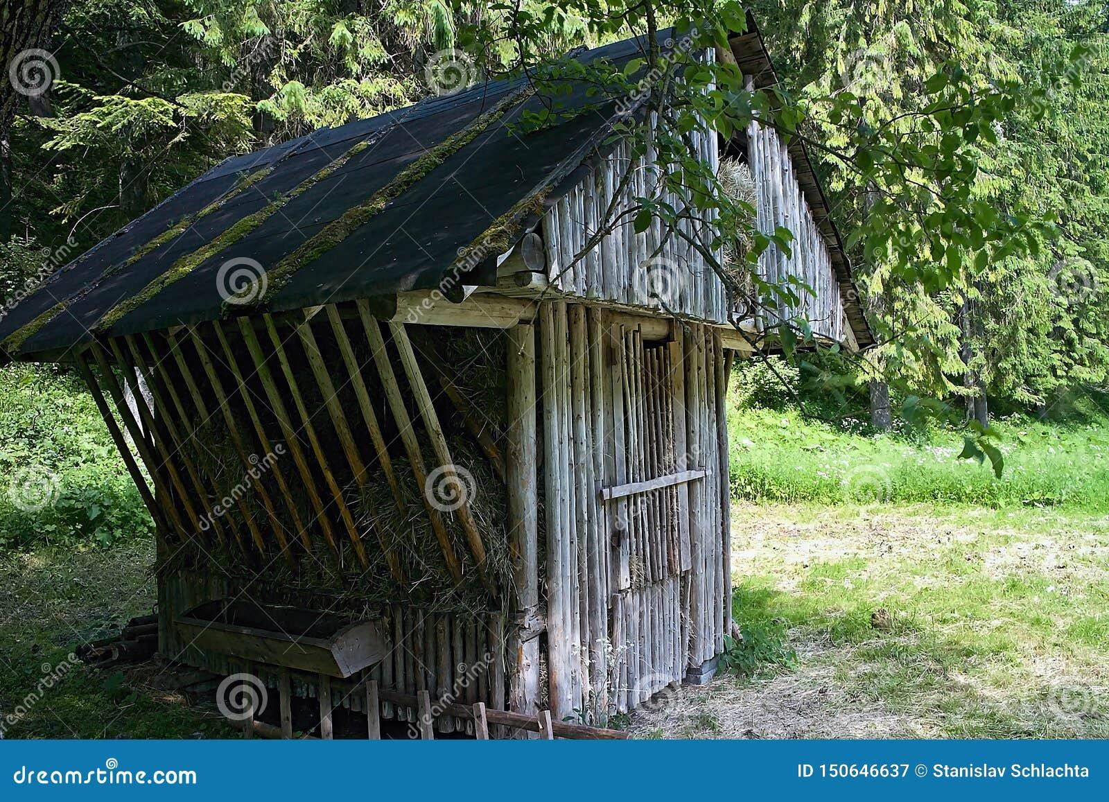 Faites les foins le stockage - conducteur pour alimenter les animaux sauvages de forêt dans la vallée d Ilanovska