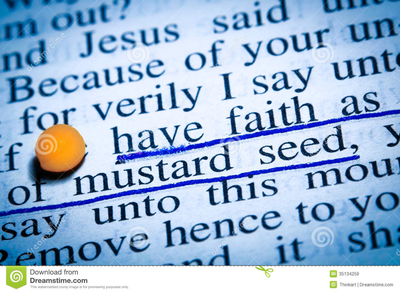 Royalty Free Stock Photo Download Faith As Mustard Seed