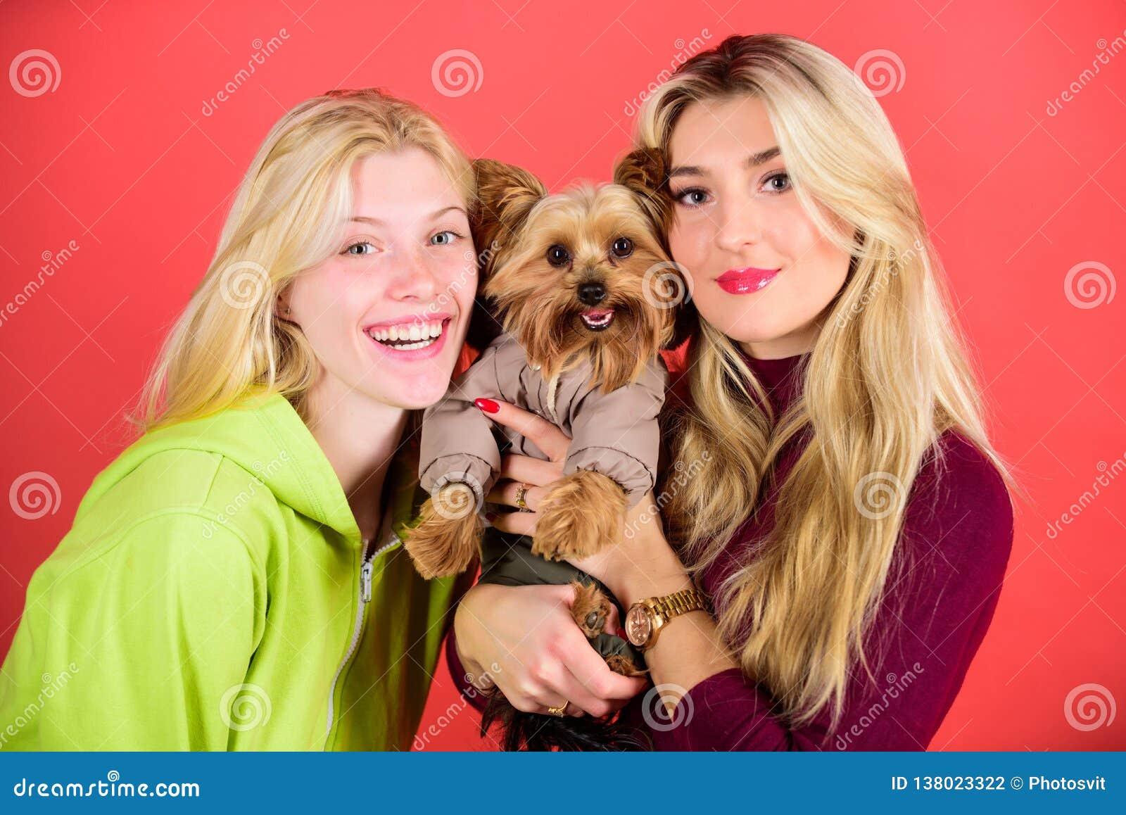 Fajny pies pet Yorkshire Terrier traken kocha socjalizację Blondynek dziewczyny adorują małego ślicznego psa Kobiety uściśnięcie