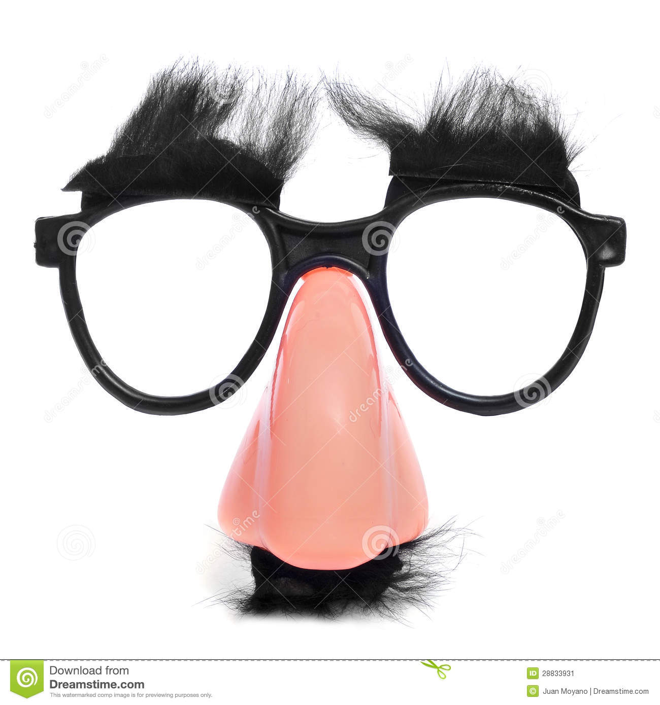 Closeup of a fake nose and glasses, with mustache and furry eyebrows.