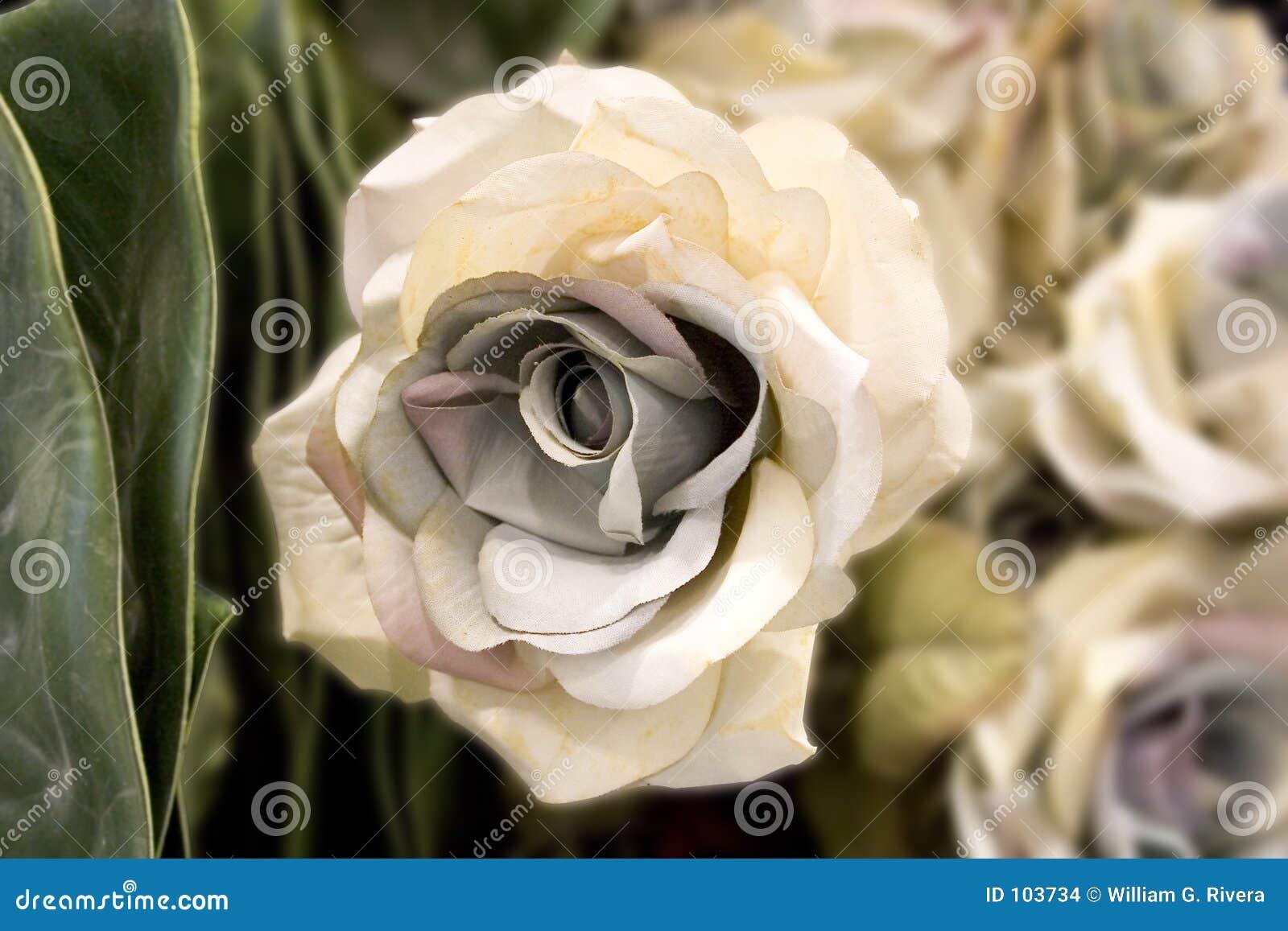 The Fake Pinkish White Flower (Fake Flower Collection)