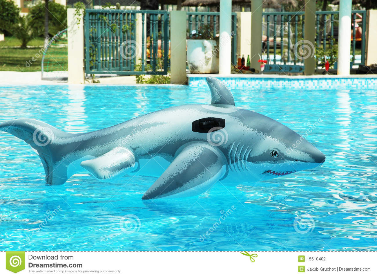 Fake Shark Toy Drifting In Clear Water Stock Photo Image