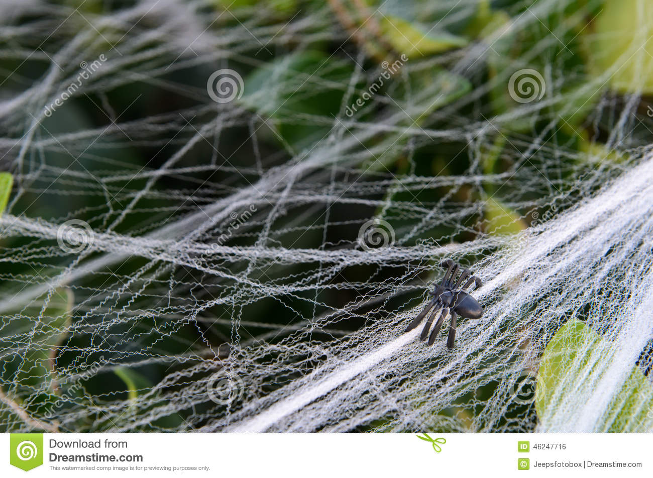 Fake Small Halloween Spider Decoration On Bush With Web Stock Photo